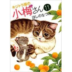 キジトラ猫の小梅さん(11)