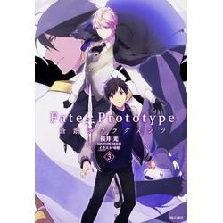 Fate/Prototype 蒼銀のフラグメンツ(3)