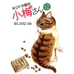 キジトラ猫の小梅さん(12)
