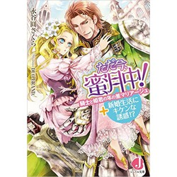 ただ今、蜜月中! 騎士と姫君の年の差マリアージュ+新婚生活にキケンな誘惑!?