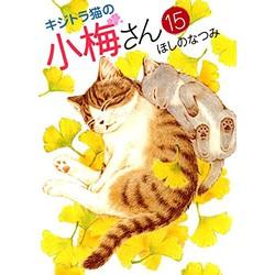 キジトラ猫の小梅さん(15)